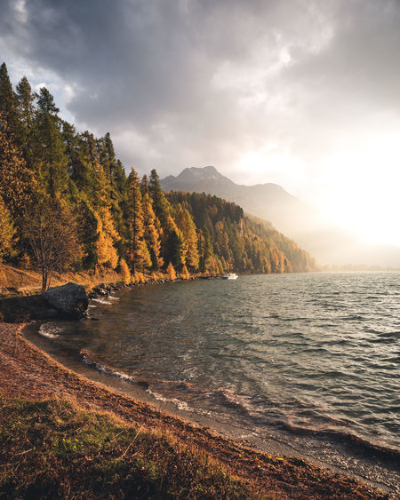 Water Sky Cloud - Sky Beauty In Nature Mountain Scenics - Nature Tranquility Tranquil Scene Nature Lake No People Tree Non-urban Scene Plant Idyllic Land Beach Mountain Range Outdoors Moody Sunset Switzerland Autumn Fall Larches