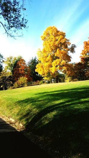 West Virginia Fall Time WV First Eyeem Photo