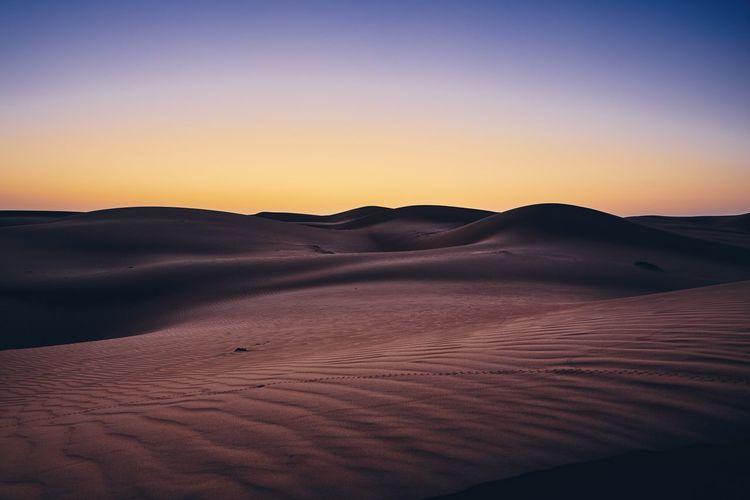Sand dunes against sky before sunrise. Desert Wahiba Sands in Oman. Desert Sand Dune Scenics - Nature Tranquil Scene Landscape Sky Environment Tranquility Sand Beauty In Nature Land Arid Climate Remote Climate Clear Sky Wahiba Sands Oman No People Dawn Dusk Sunrise Sunset Beginnings Morning Nature