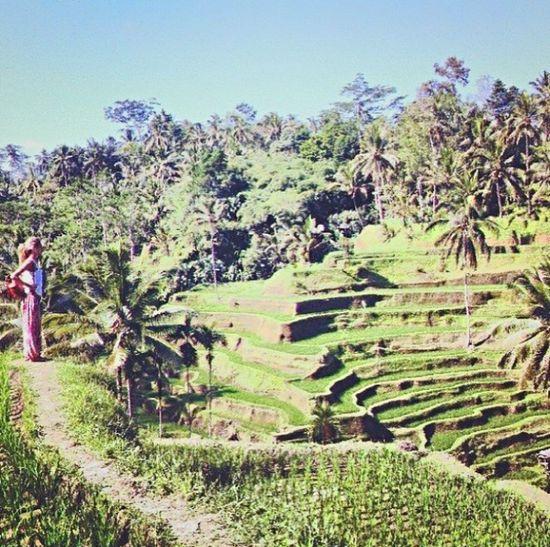 Self Portrait Around The World so little in a big magnifique world ! Bali. On fait les réserves de riz