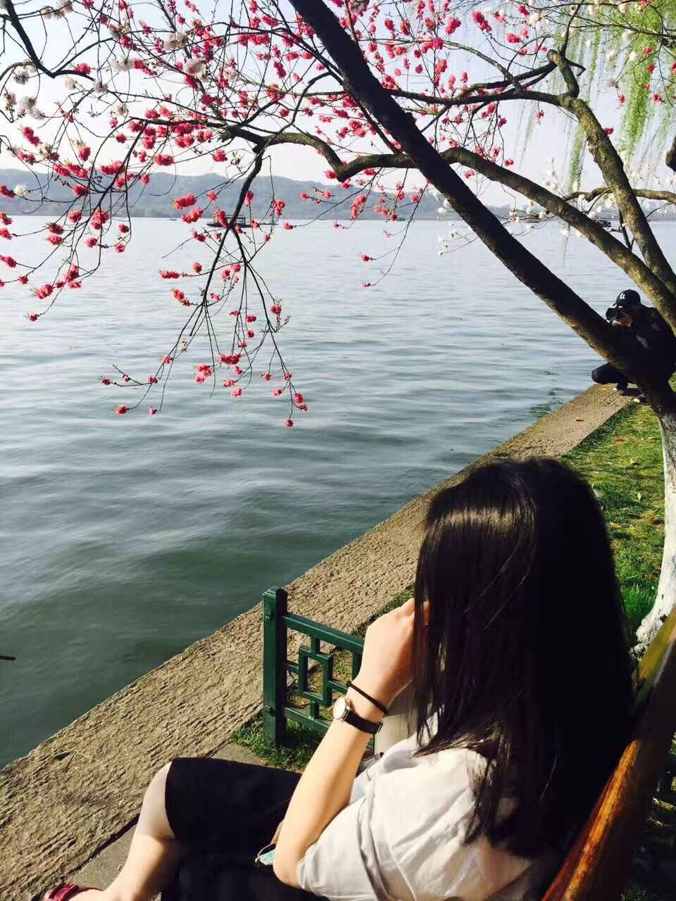 water, tree, nature, real people, one person, sitting, beauty in nature, rear view, day, leisure activity, lake, women, branch, outdoors, sky, people