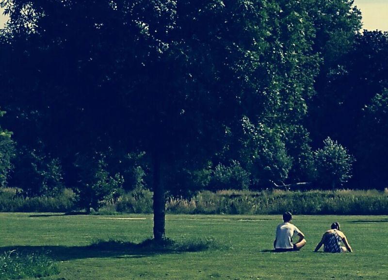 Quand il fait beau à Lille (jardins du colisée Lambersart) Lille Nord