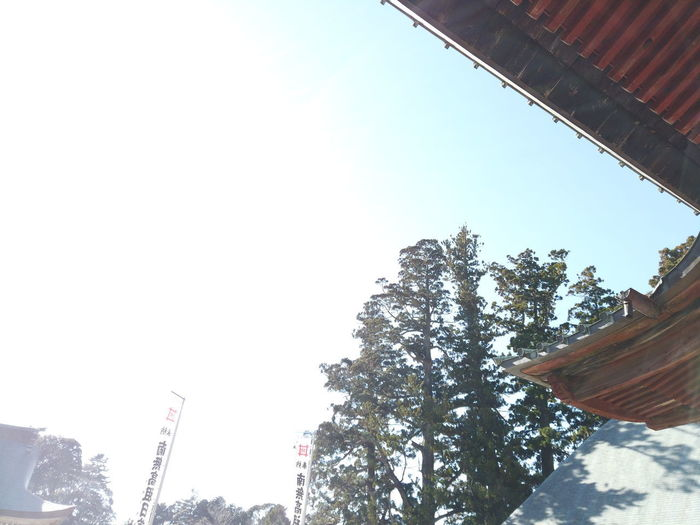 Japan Shadow Shrine Temple Japanese Culture Travel Sky Low Angle View Plant Tree Nature Architecture Day Clear Sky Built Structure Building Exterior No People Copy Space Outdoors Growth Tall - High Building Beauty In Nature Sunlight Industry Religion