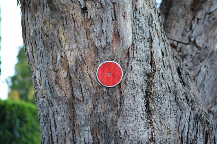 Dot Red Dot