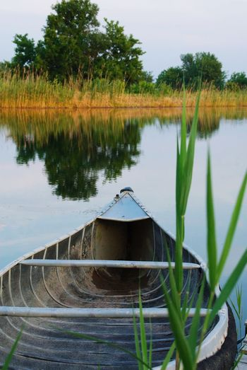 Canoe on the creek Canoe Plant Water Lake Tree Reflection Nature No People Tranquility Growth Sky Tranquil Scene Day Scenics - Nature Beauty In Nature Outdoors Grass Green Color Architecture Built Structure