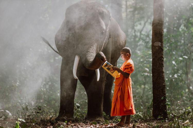 Full length of man holding elephant in forest