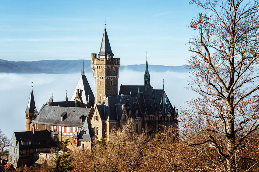 Architecture Built Structure Building Exterior Sky Religion Place Of Worship Building Tree Belief Spirituality No People Nature Plant History Day Spire  Bare Tree Tower Outdoors Harz Harzmountains Castle Weather Wernigerode