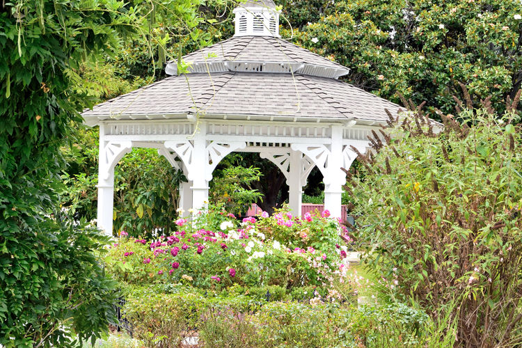 Gazebo @ Meek Mansion 1 Cherryland, Ca. 10 Acre Estate Built 1869 William MeekHistoric Landmark Architecture : Victorian Style: Second Empire, Italian Villa 7,902 Sq Ft. Mansion Has 3 Floors With A Cupola 23-27 Rooms Basement Gazebo Carriage House Garden Meek Mansion Originally 3,000 Acres Orchards Crops : Cherry, Apricots, Plums, Almonds Garden_collection Garden Photography Garden Lovers Landscape Landscape_photography Landscape_Collection Landscape_lovers