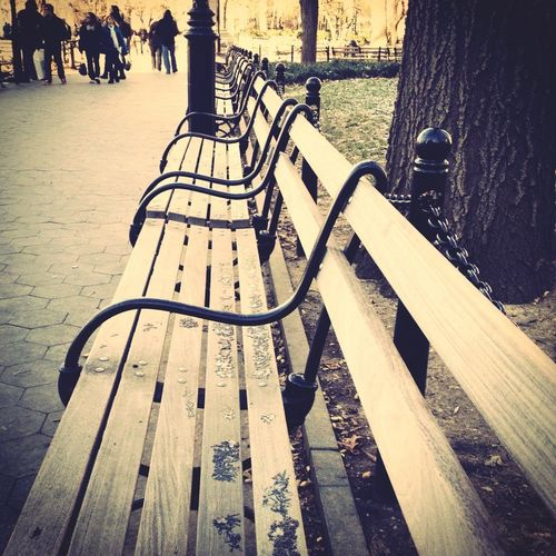 NY park bench