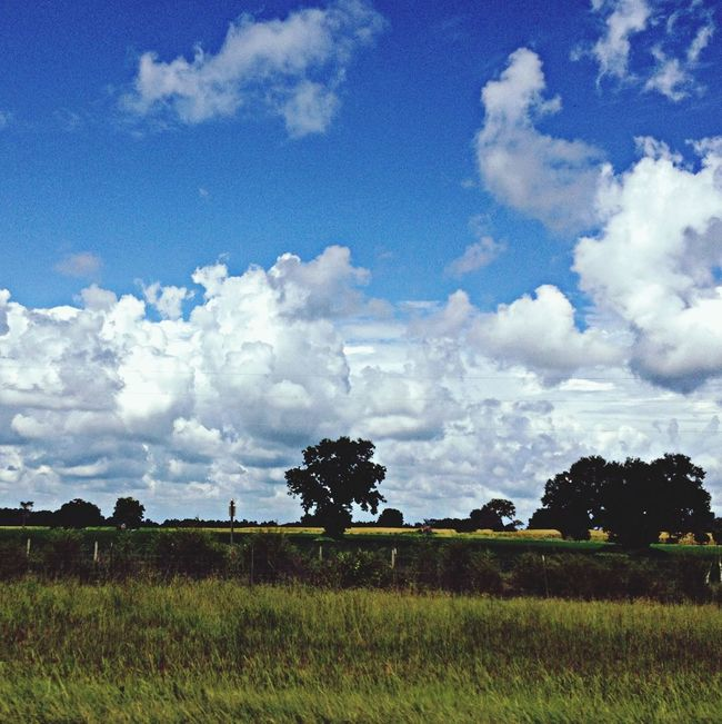 Beautiful day on 75. Blueskies On The Road Roadtrip I75