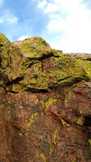 Landscape Cloud - Sky Sky Nature Rural Scene Outdoors Beauty In Nature Colorado Close-up Tranquility Green Color Design Blue Art In Nature Art Beautiful Hotsetooth Falls Hobby Rock Rock Moss Moss