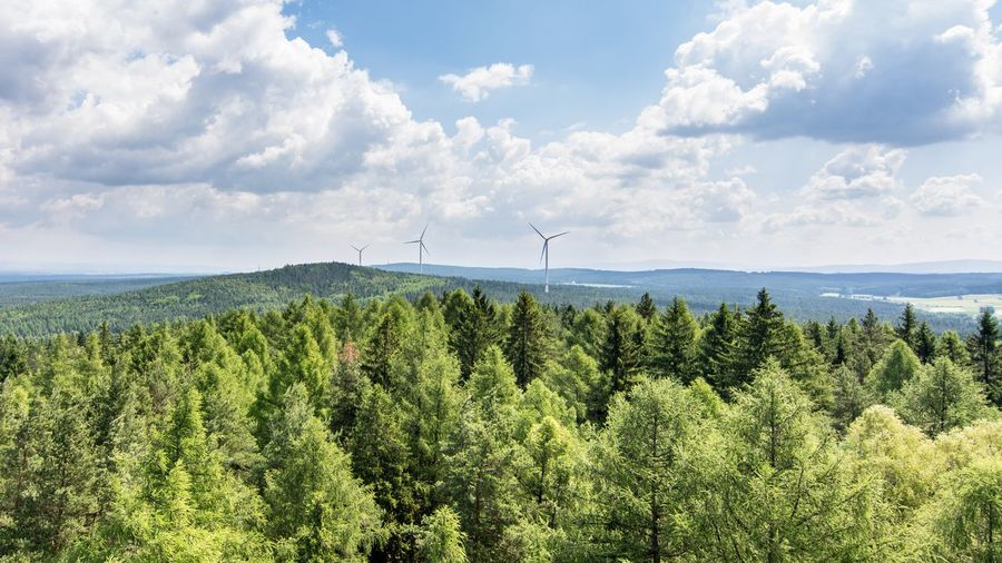 Over the trees... HohenbergadEger Marktleuthen Bayern Bavaria Landscape_Collection Nikon D7100 Nikonphotography Nikon Sky Nature Cloud - Sky No People Fuel And Power Generation Day Beauty In Nature Tree Landscape Wind Turbine Alternative Energy Scenics Windmill Wind Power Tranquility Industrial Windmill