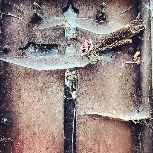 Memento...Mori.. Death Instahub Horror Popularpage Religion Instacool Cemetery Lachaise Iphonesia Mori Instagram Thepopularpage Memento ShoutOut IPhone Iphonography Paris Ig France Christianity Colors Igers Spider Morbid Gothic Instaaaaah Web Webstagram Cross Instagrammers