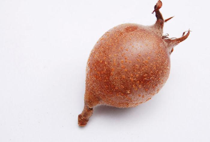 medlar Autumn Close-up Food Fruit Medlar No People Vitamine Vitamine C White Background
