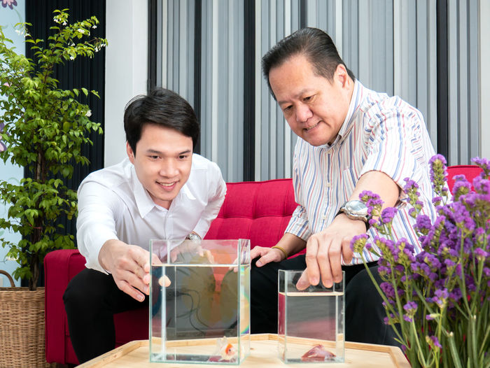 Asian man,father and son, talking about betta fish in living room. Two People Men Males  Adult Togetherness Smiling Table Sitting Happiness Emotion Indoors  Holding Looking Front View Furniture Lifestyles Waist Up Leisure Activity Mature Adult Mature Men Couple - Relationship Fise Betta Fish Siam Fighting Fish Petal