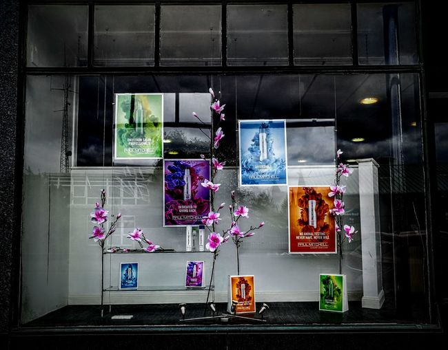 Outdoors Architecture Shop Front Reflection Black And White Glass - Material pink flowers coloured posters Forfar Scotland