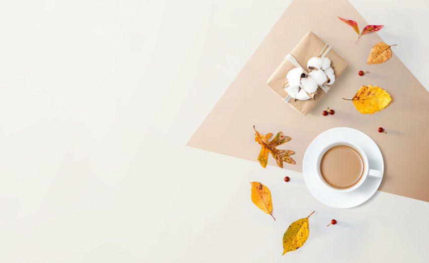 High angle view of tea served on table against white background