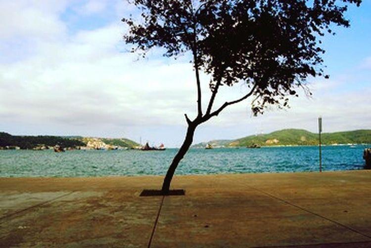 Istanbul Sea Tree