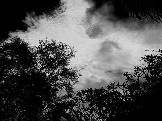 Beauty In Nature Black And White Friday .gray Cloads EyeEmNewHere