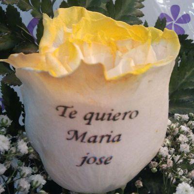 Rosaamarilla de Floresadomicilio www.graficflower.com, la Floristería mas original e innovadora, con los Ramosdeflores mas exclusivos de mercado, visitanos y sorprendel@s