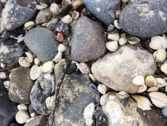 Rock Full Frame Pebble Beach Backgrounds No People Close-up Pebble Beach