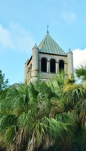Popping tower , Charleston sc Architecture Built Structure Building Exterior Sky Day Low Angle View Growth Outdoors Plant Tree No People Nature Charleston South Carolina Palm Trees