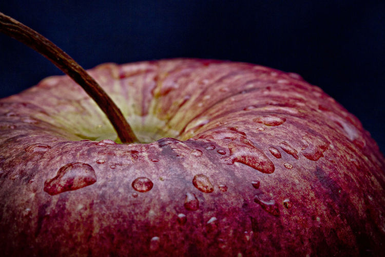 015/365. Macro Food Apple Apple - Fruit Close-up Food Food And Drink Freshness Healthy Eating No People Project365 Red