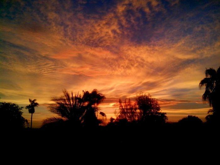 Sunset Redsunset Fercosunset