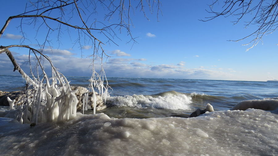 Lake Michigan Beauty In Nature Clouds Cold Temperature Day Frozen Branches Horizon Over Water Ice Frozen Water Drips Milwaukee Lakefront Nature No People Outdoors Scenics Sky Tranquil Scene Tranquility Tree Water Waves Winter