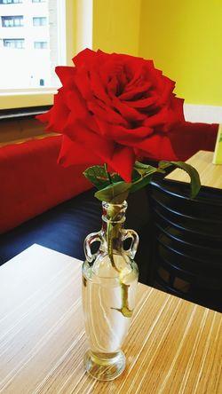 Liebe Nature Blumen Luft Herz Rosa Rote Rossa Amore Romantic Frisch Farbe Bella Bellezzadellanatura Bellezzanellasemplicità Bellezza Pura