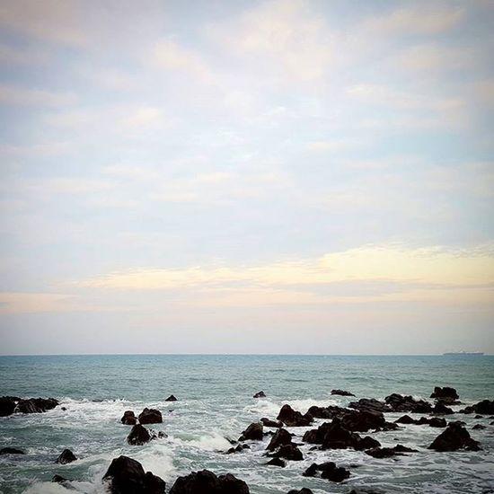 주전해수욕장 울산 . . .Photography Photographer 부산 Busan Sea 바다 일상 데일리 감성 감성사진 사진 여행 일상공유 Sotong 미러리스 Follow Followme Photo Travel Daily Southkorea