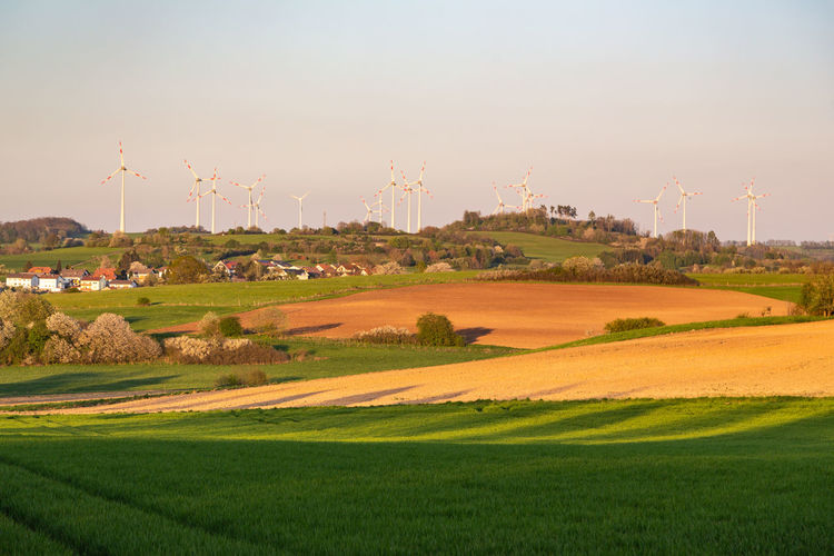 Sky Landscape Environment Field Land Nature Plant Scenics - Nature Beauty In Nature Grass Rural Scene Fuel And Power Generation Day Agriculture Outdoors Green Color No People Turbine Technology Tranquil Scene Vogelsberg Germany
