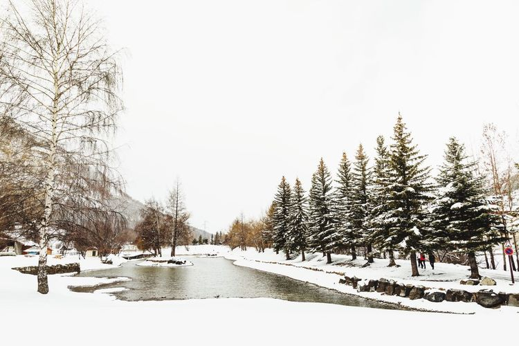 EyeEm Gallery Travel Destinations EyeEmBestPics Snow Winter Cold Temperature Weather Tree Nature Frozen Tranquil Scene Snowing Beauty In Nature From My Point Of View EyeEm Best Shots EyeEm Nature Lover EyeEm Selects Serre Chevalier  France