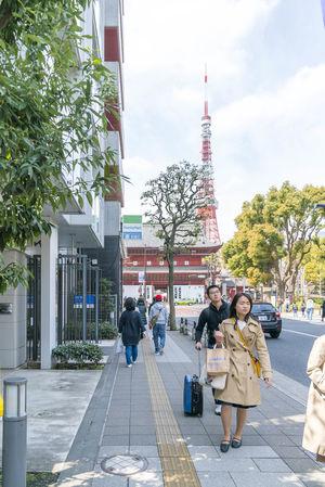 Shiba Park, Minato, Tokyo during spring cherry blossom sakura hanami Blossom Cherry Hanami Japan Minatoku Sakura Spring Tokyo Tower