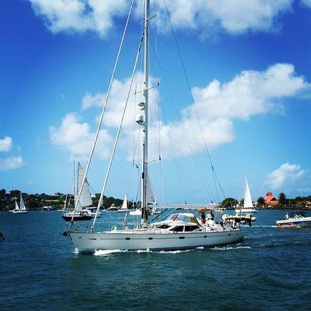 More coming! Islandlife 758 StLucia Saintlucia caribbean paradise igy arc mercury igymarinas