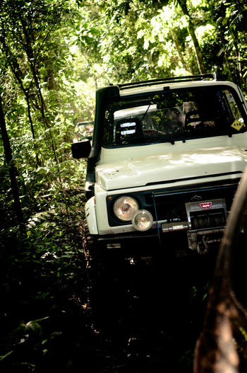 Car in forest 4x4 Bog Car Day De-stress Jeep Life Lifestyles Mud Off Road Outdoors Willys