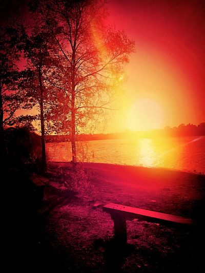 Sunset Nature Beauty In Nature No People Red Sunlight Scenics Sky Silhouette Tree Water Outdoors Colour Therapy