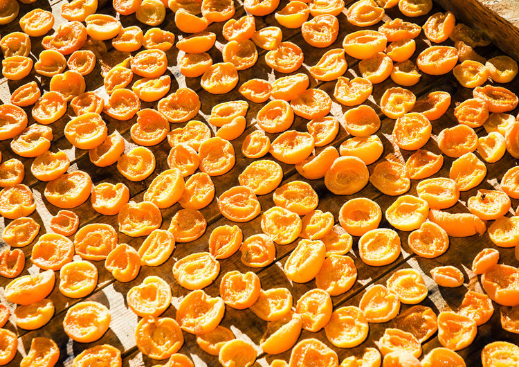Apricots Cape Province Freshness Little Karoo South Africa Sun Dried Apricots Abundance Apricots On The Floor Backgrounds Close-up Day Dried Apricots Food Food And Drink Freshness Healthy Eating Large Group Of Objects No People Sun Dried Fruit Wholesome