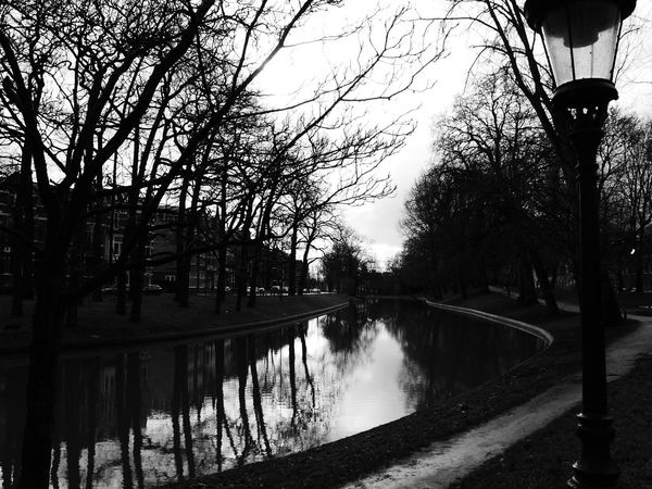 Netherlands Holland Utrecht Nature Landscape Black & White Monochrome River Canal Reflection Tree Sensitivity Water Mind  Light Dark Shade Sky Boring Shakehand Unseen Curve Point Afternoon Time Inscribes Hideous Scars On Our Faces, Equally