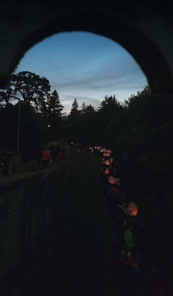 The Lantern Parade along the river yesterday. .. Procession Dark фестиваль фонарики рыбы Culture Illuminated Night Fish Newtown Powys Salmon лосось Lanterns Trees Festival Wales Autumn Fall Path Crowd Celebration Children