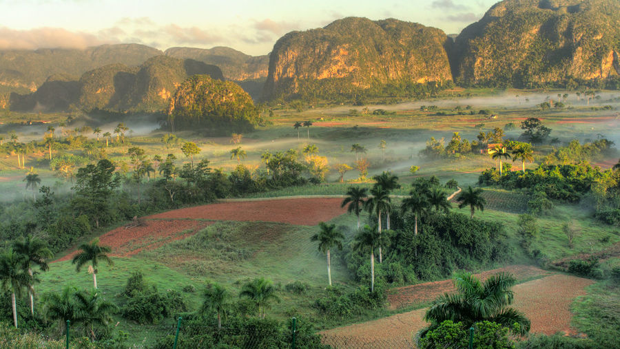 Agriculture Beauty In Nature Land Landscape Mountain Plant Rural Scene Scenics - Nature Tranquil Scene Tree Valle Vinales