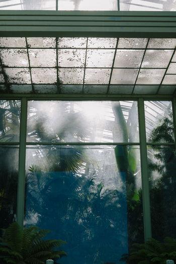 Swimming pool by sea seen through window