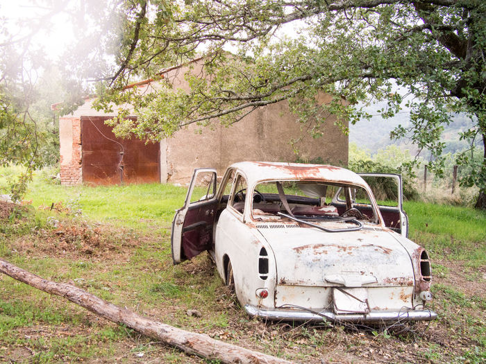 Abandoned Antique Bad Condition Car Damaged Day Destruction Land Vehicle Mode Of Transport Nature No People Obsolete Old Old-fashioned Outdoors Rusty Transportation Tree
