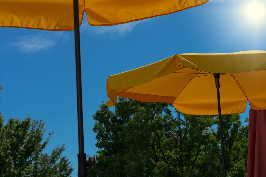 Two yellow parasols with bright sun and blue sky Beach Umbrella Blue Day Low Angle View Nature No People Outdoors Parasol Plant Protection Safety Security Shade Sky Sunlight Tranquility Tree Umbrella Yellow