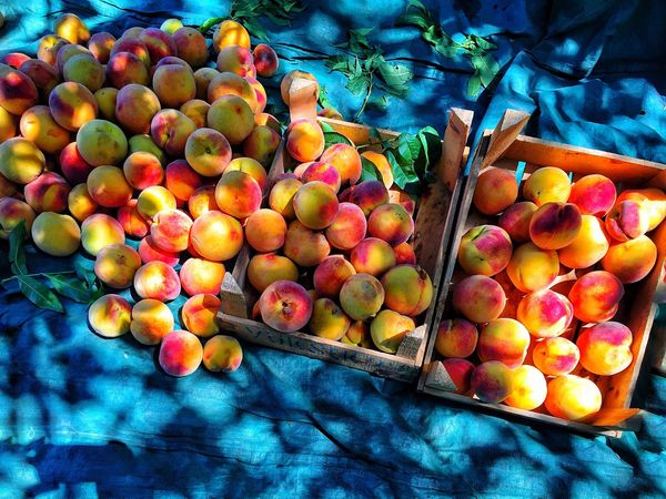 EyeEm Best Shots EyeEm Gallery Eyeem Market Eyeemphotography Fruit Peach Peach Color Nectarines Mersin Turkey