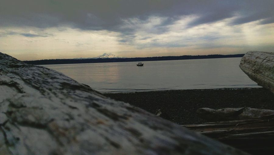 Nature Boat Drift Wood  Pudget Sound Vashon Island Water Mount Rainier Beach Showcase March The Great Outdoors With Adobe