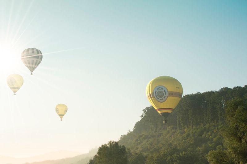 Hot air balloons in oeventrop in morning mist. warsteiner international montgolfiade