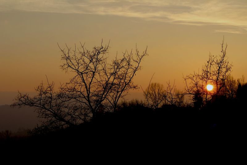 Atmosphere Italy Landscape Light Nature Outdoors Sky Sunset Sunset Silhouettes Tranquil Scene Tranquility Tree Winter