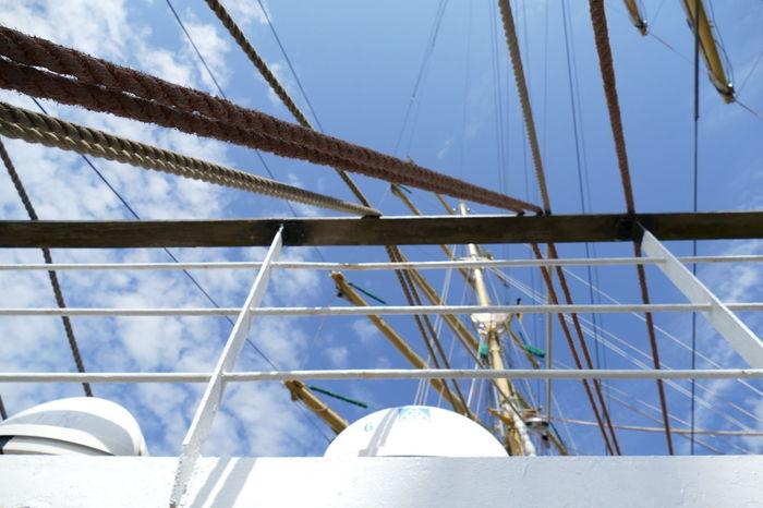 Boat Boating Boats⛵️ Guinness World Record Marine Marine Life MIR Russia Sail Sailing Sailing Boat Sailing Ship Segelschulschiff St Petersburg Travemünde