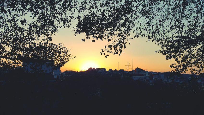 마지막 석양구경. 날이 맑아서 다행이다. Sunset Byebye